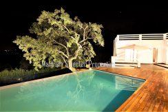 House_in_Marbella-9Thepoolatnight